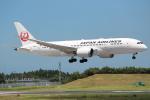 OMAさんが、成田国際空港で撮影した日本航空 787-8 Dreamlinerの航空フォト(飛行機 写真・画像)