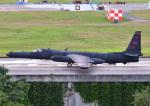 じーく。さんが、嘉手納飛行場で撮影したアメリカ空軍 U-2 Dragon Ladyの航空フォト(飛行機 写真・画像)