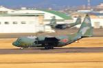 アイトムさんが、名古屋飛行場で撮影した航空自衛隊 C-130H Herculesの航空フォト(写真)