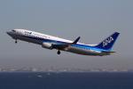 VFRさんが、羽田空港で撮影した全日空 737-881の航空フォト(写真)