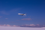 yumeさんが、旭川空港で撮影した全日空 737-881の航空フォト(写真)