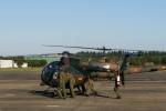 らむえあたーびんさんが、入間飛行場で撮影した陸上自衛隊 OH-6Dの航空フォト(写真)