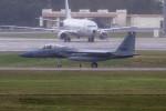 Koenig117さんが、嘉手納飛行場で撮影したアメリカ空軍 F-15C-38-MC Eagleの航空フォト(写真)