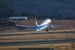 碇シンジさんが、岡山空港で撮影した全日空 737-881の航空フォト(飛行機 写真・画像)
