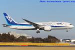 いおりさんが、成田国際空港で撮影した全日空 787-8 Dreamlinerの航空フォト(写真)