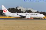 いおりさんが、成田国際空港で撮影した日本航空 737-846の航空フォト(写真)