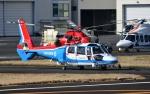 Mizuki24さんが、東京ヘリポートで撮影した川崎市消防航空隊 AS365N3 Dauphin 2の航空フォト(写真)