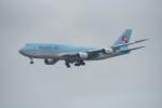 kumagorouさんが、成田国際空港で撮影した大韓航空 747-8B5の航空フォト(写真)