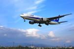 N村さんが、松山空港で撮影した全日空 777-281の航空フォト(写真)