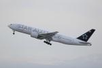 09RJNH27さんが、新千歳空港で撮影したアシアナ航空 777-28E/ERの航空フォト(写真)