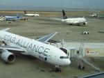 た~きゅんさんが、羽田空港で撮影した全日空 777-281の航空フォト(写真)
