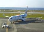 AlphaWing737ケインさんが、久米島空港で撮影した日本トランスオーシャン航空 737-8Q3の航空フォト(写真)
