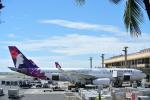 金魚さんが、ダニエル・K・イノウエ国際空港で撮影したハワイアン航空 A330-243の航空フォト(飛行機 写真・画像)