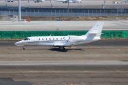 ハム太郎。さんが、羽田空港で撮影したノエビア 680 Citation Sovereignの航空フォト(写真)