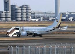ハム太郎。さんが、羽田空港で撮影したタウン&カントリー・フード・マーケット 737-75V BBJの航空フォト(写真)