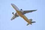 tmkさんが、関西国際空港で撮影したバニラエア A320-214の航空フォト(写真)
