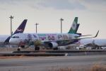 tmkさんが、関西国際空港で撮影したエバー航空 A321-211の航空フォト(写真)