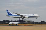 ポン太さんが、成田国際空港で撮影した全日空 787-8 Dreamlinerの航空フォト(写真)