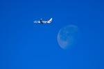 EY888さんが、中部国際空港で撮影した日本トランスオーシャン航空 737-8Q3の航空フォト(写真)