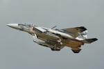 鈴鹿@風さんが、小松空港で撮影した航空自衛隊 F-15DJ Eagleの航空フォト(写真)