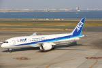 安芸あすかさんが、羽田空港で撮影した全日空 787-8 Dreamlinerの航空フォト(写真)