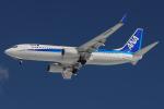 西風さんが、大館能代空港で撮影した全日空 737-881の航空フォト(写真)