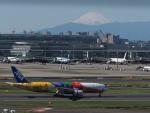 cooperさんが、羽田空港で撮影した全日空 777-281/ERの航空フォト(写真)