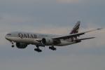 kaeru6006さんが、成田国際空港で撮影したカタール航空 777-2DZ/LRの航空フォト(写真)