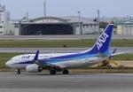 りゅうさんさんが、那覇空港で撮影した全日空 737-781の航空フォト(写真)