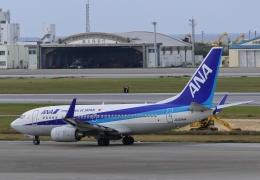 りゅうさんさんが、那覇空港で撮影した全日空 737-781の航空フォト(飛行機 写真・画像)