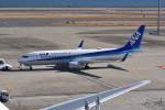 Cスマイルさんが、羽田空港で撮影した全日空 737-881の航空フォト(写真)