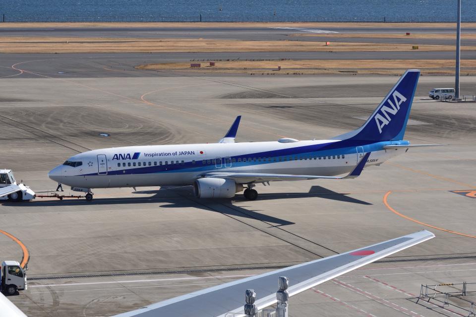 Cスマイルさんの全日空 Boeing 737-800 (JA56AN) 航空フォト