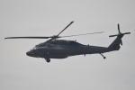 350JMさんが、横田基地で撮影したアメリカ陸軍 UH-60L Black Hawk (S-70A)の航空フォト(写真)