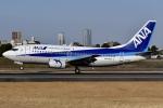 冷やし中華始めましたさんが、伊丹空港で撮影した全日空 737-54Kの航空フォト(写真)