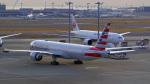 tkosadaさんが、羽田空港で撮影したアメリカン航空 777-323/ERの航空フォト(写真)