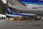 Cスマイルさんが、羽田空港で撮影した全日空 737-54Kの航空フォト(写真)