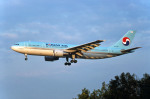 Gambardierさんが、伊丹空港で撮影した大韓航空 A300B4-622Rの航空フォト(写真)
