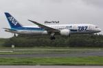 kan787allさんが、成田国際空港で撮影した全日空 787-8 Dreamlinerの航空フォト(写真)