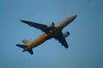 FRTさんが、那覇空港で撮影したバニラエア A320-214の航空フォト(飛行機 写真・画像)