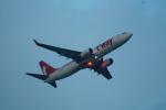 FRTさんが、那覇空港で撮影したティーウェイ航空 737-8ASの航空フォト(飛行機 写真・画像)