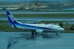 FRTさんが、那覇空港で撮影した全日空 737-781の航空フォト(飛行機 写真・画像)