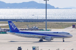 apphgさんが、中部国際空港で撮影した全日空 A320-211の航空フォト(写真)