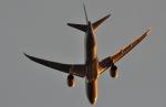 kenko.sさんが、成田国際空港で撮影した全日空 787-9の航空フォト(写真)