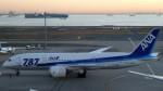 westtowerさんが、羽田空港で撮影した全日空 787-8 Dreamlinerの航空フォト(写真)