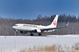 Cimarronさんが、帯広空港で撮影した日本航空 737-846の航空フォト(飛行機 写真・画像)