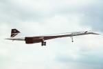 tassさんが、ロンドン・ヒースロー空港で撮影したブリティッシュ・エアウェイズ Concorde 102の航空フォト(飛行機 写真・画像)