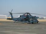 くまのんさんが、名古屋飛行場で撮影した航空自衛隊 UH-60Jの航空フォト(写真)