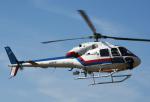 チャーリーマイクさんが、東京ヘリポートで撮影した東邦航空 AS355F2 Ecureuil 2の航空フォト(写真)