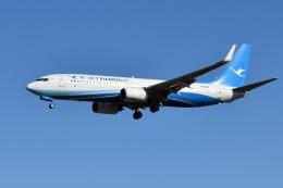 saoya_saodakeさんが、成田国際空港で撮影した厦門航空 737-86Nの航空フォト(写真)