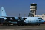 さんたまるたさんが、名古屋飛行場で撮影した航空自衛隊 C-130H Herculesの航空フォト(写真)